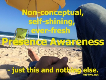 smallPresence-Awareness
